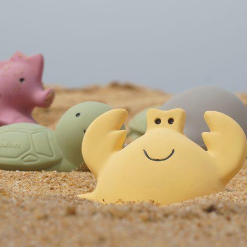 Krab in zand - Mijn eerste oceaandiertje Tikiri