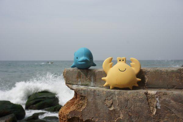 Rubberen krab en dolfijn - Tikiri