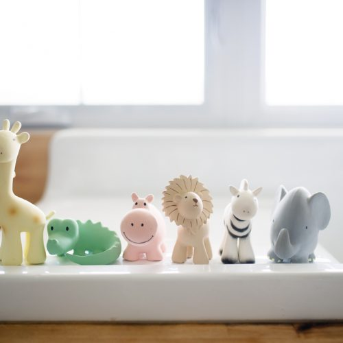 Tikiri mijn eerste zoodiertje op badrand